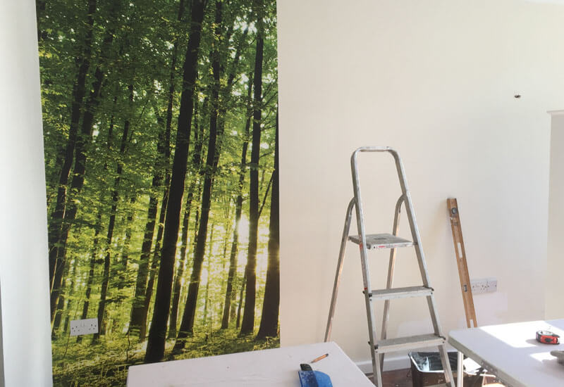dandec_painting_decorating_residential_commercial_image_2